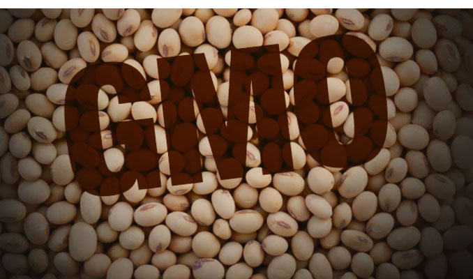 LEGUMES AND GRAINS ARE BAD FOR YOU