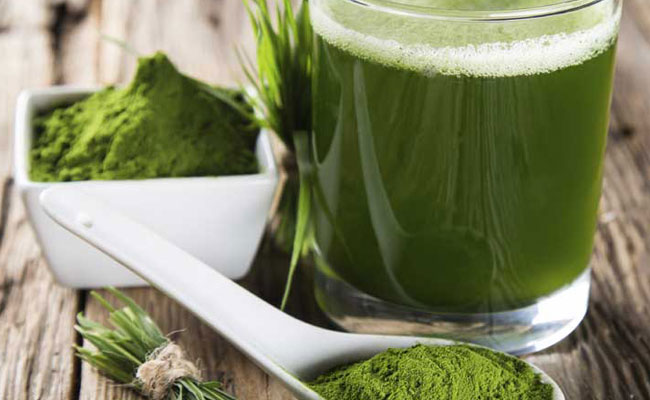 Spirulina - Best Plant Complete Protein Sources For Athletes